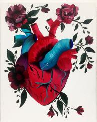 corazon anatomica