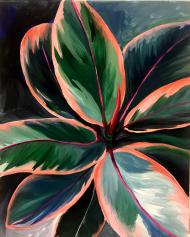 plantita 2